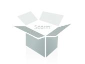 Programa Superior de Certificación en Gestión de Programas de Empleo (Online)