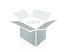 Postgrado en Gestión y Auditoría de Sistemas de Seguridad de la Información ISO 27001:2014 (Online)